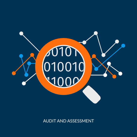 zybrstate audit assessment
